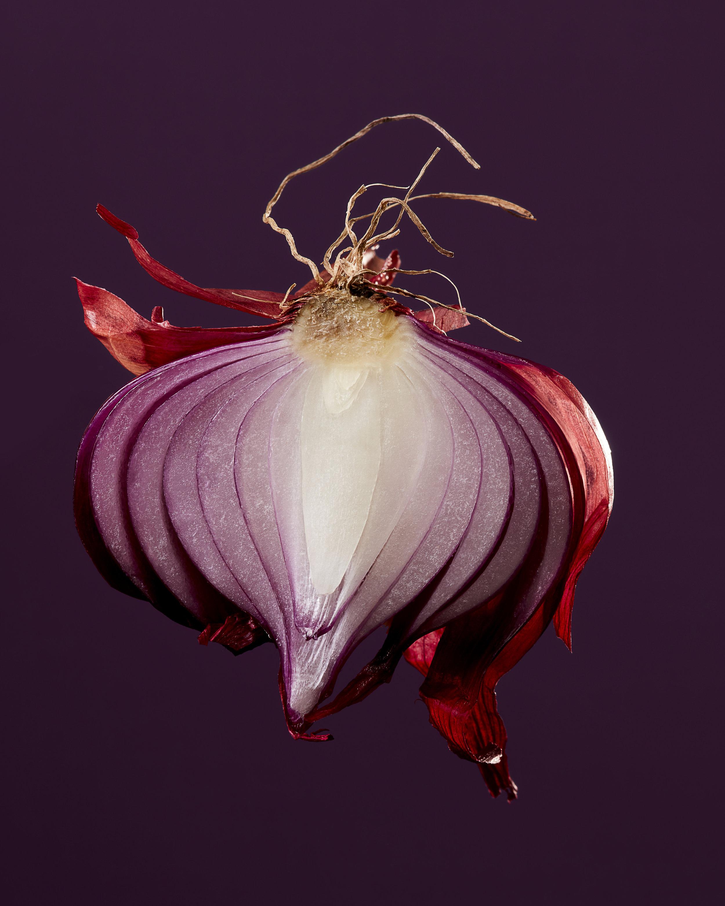 Red Onion Food Stylist Judy Kim Photographer Josh Dickinson