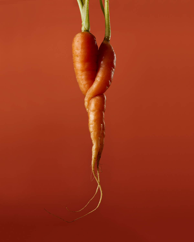 Carrot Food Stylist Judy Kim Photographer Josh Dickinson