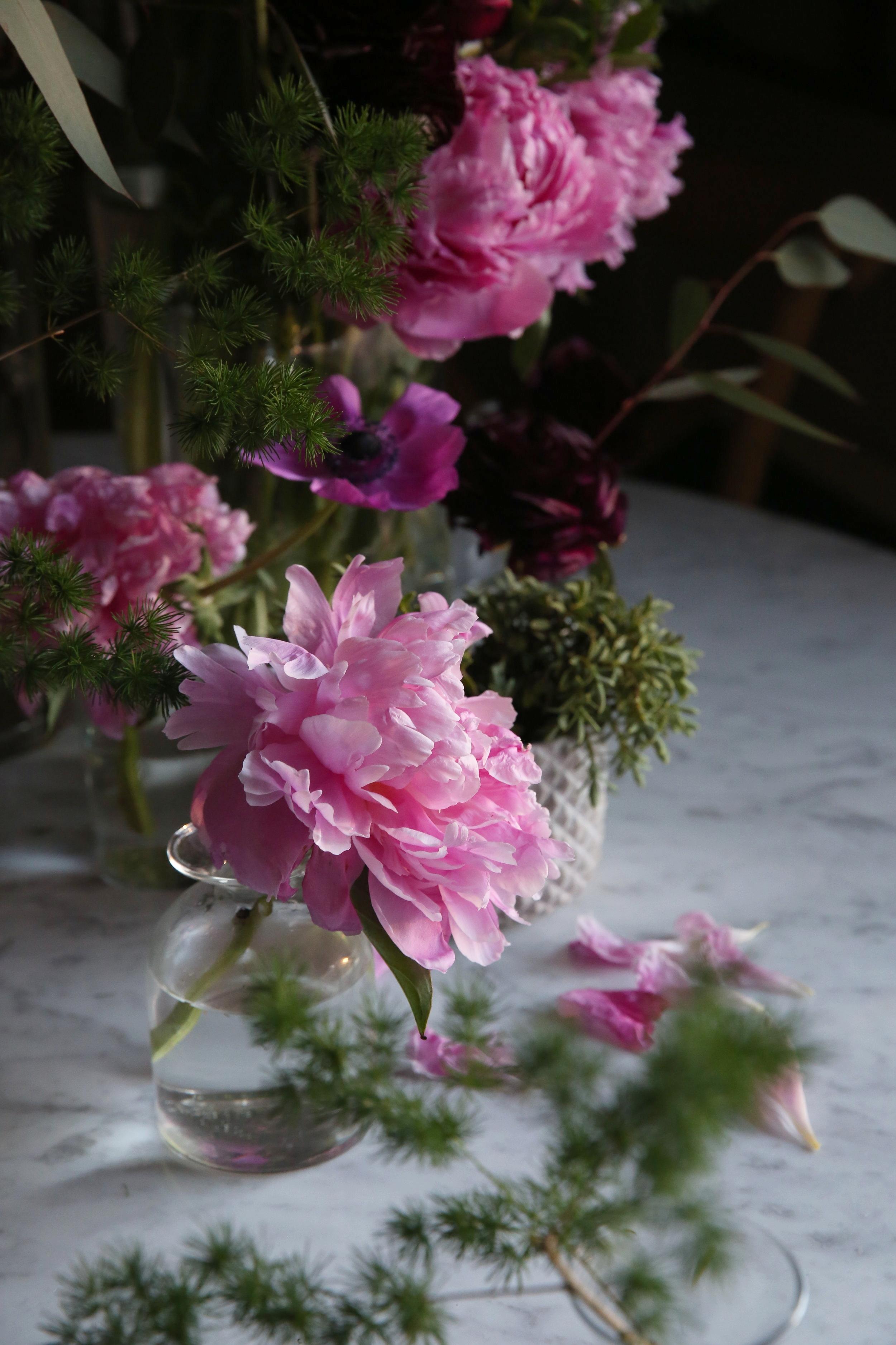 Judy Kim, Peony Still life, floral designer