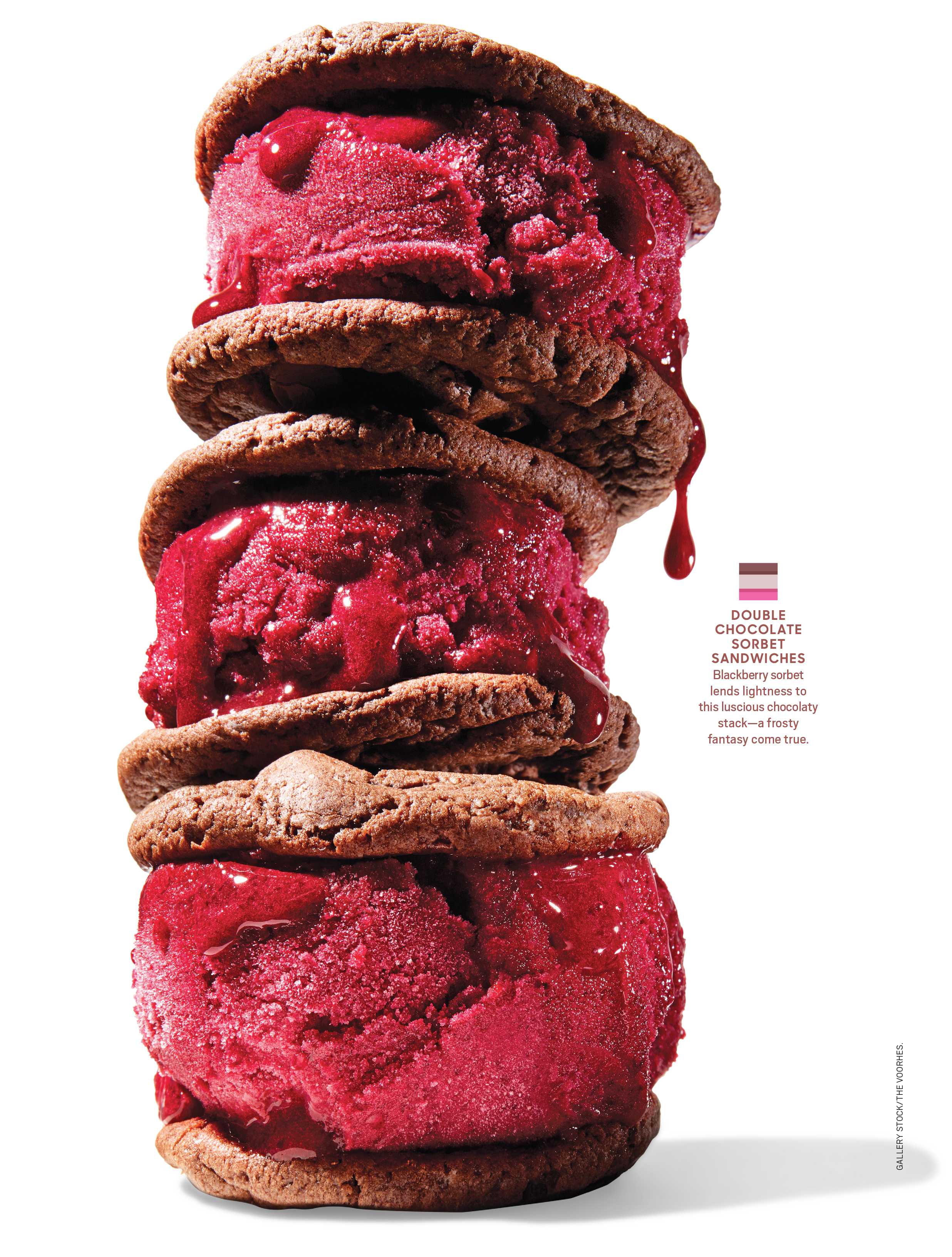 Double Chocolate Sorbet Sandwiches by Judy Kim