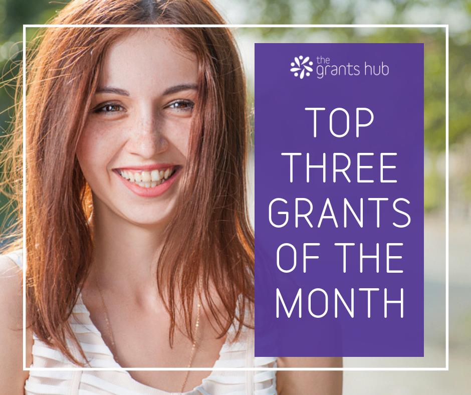 Top Three Grants - November.png