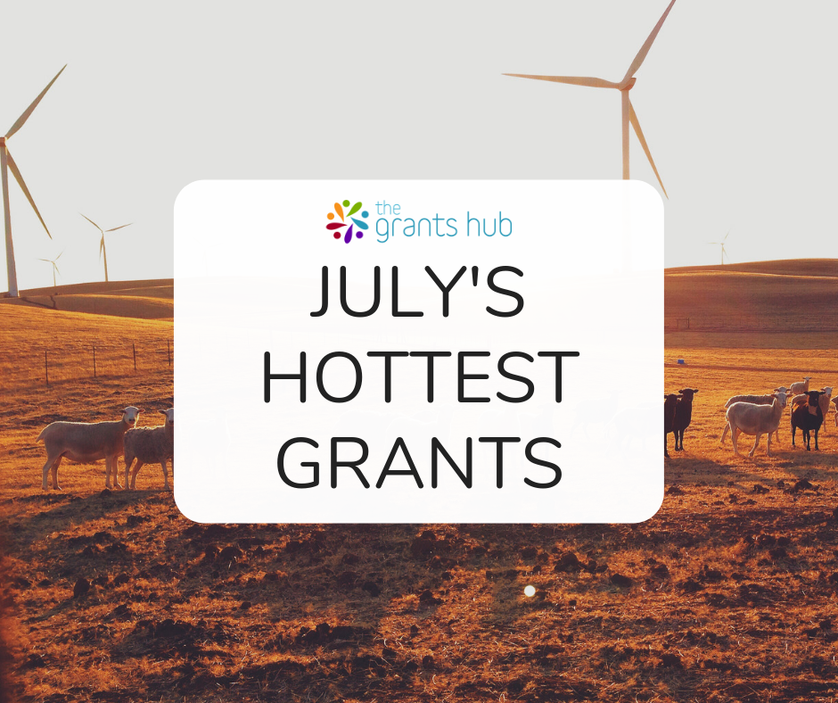 July's Hottest Grants.png