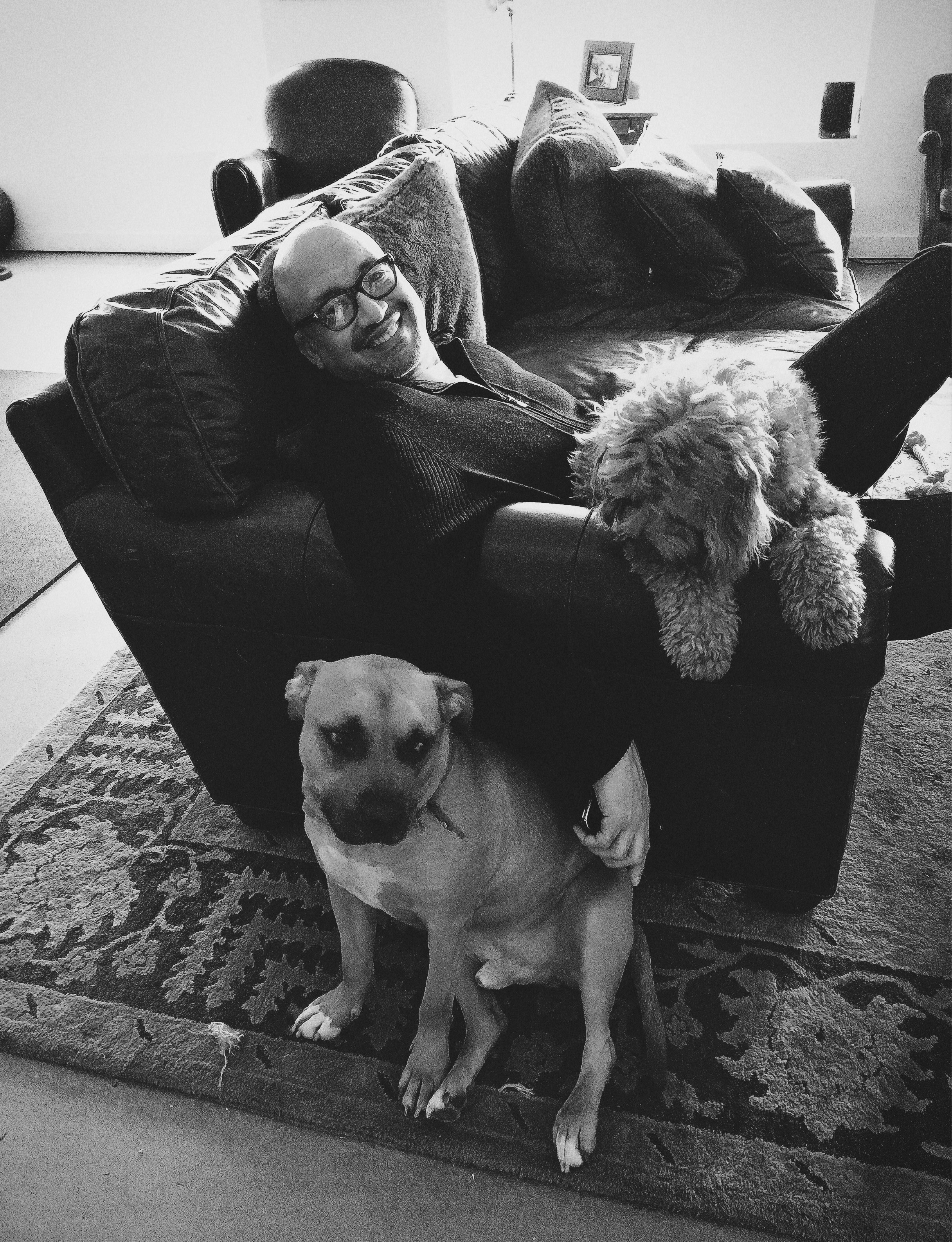 Michael Stradford lounging with Raj and Teddy, December 2015.
