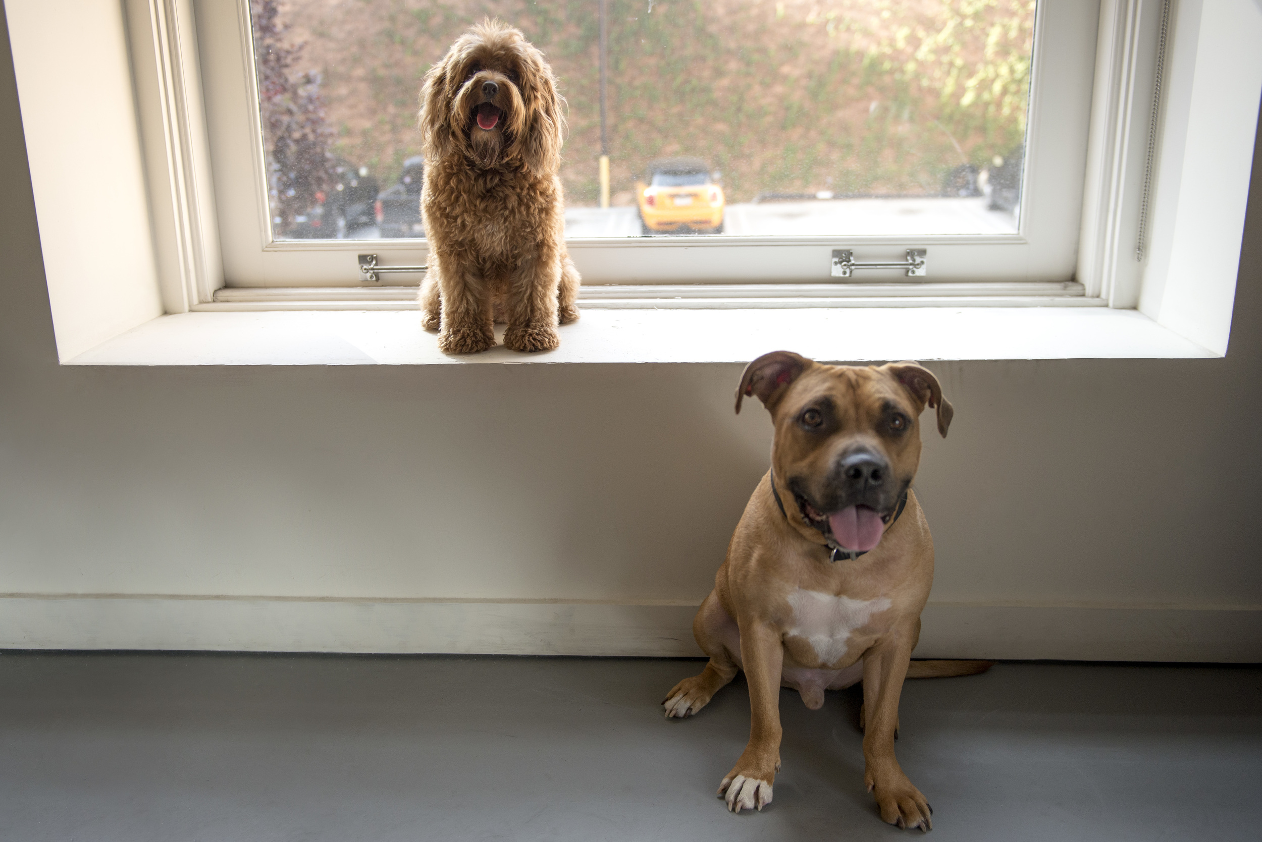 Teddy and Raj.