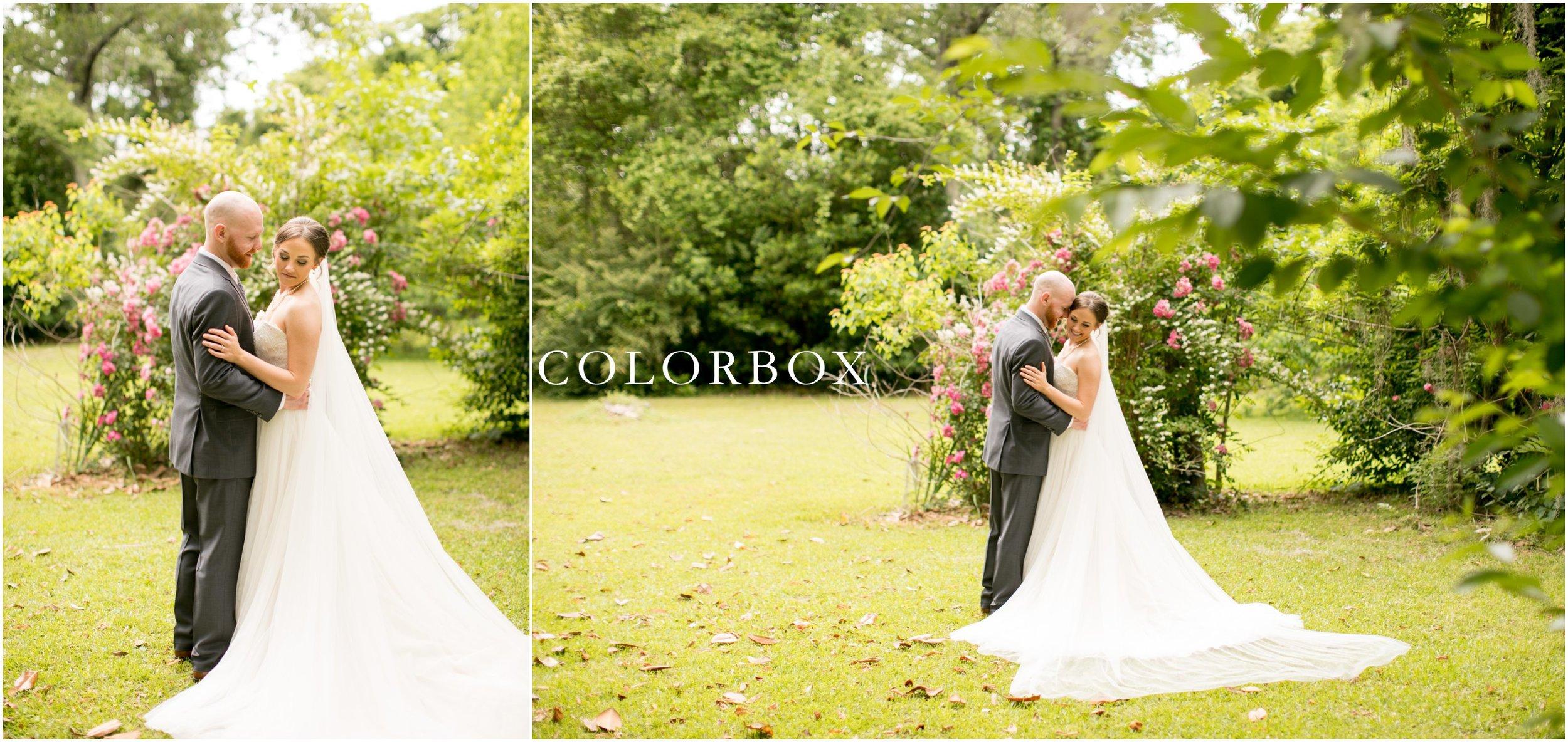 colorboxphotographers_5910.jpg