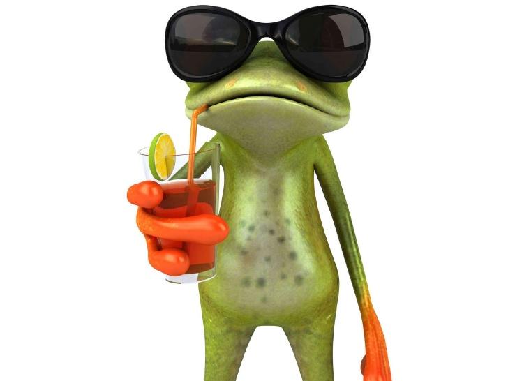 funny-frog-1-728.jpg