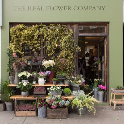 The Real Flower Company Chelsea are stocking my book