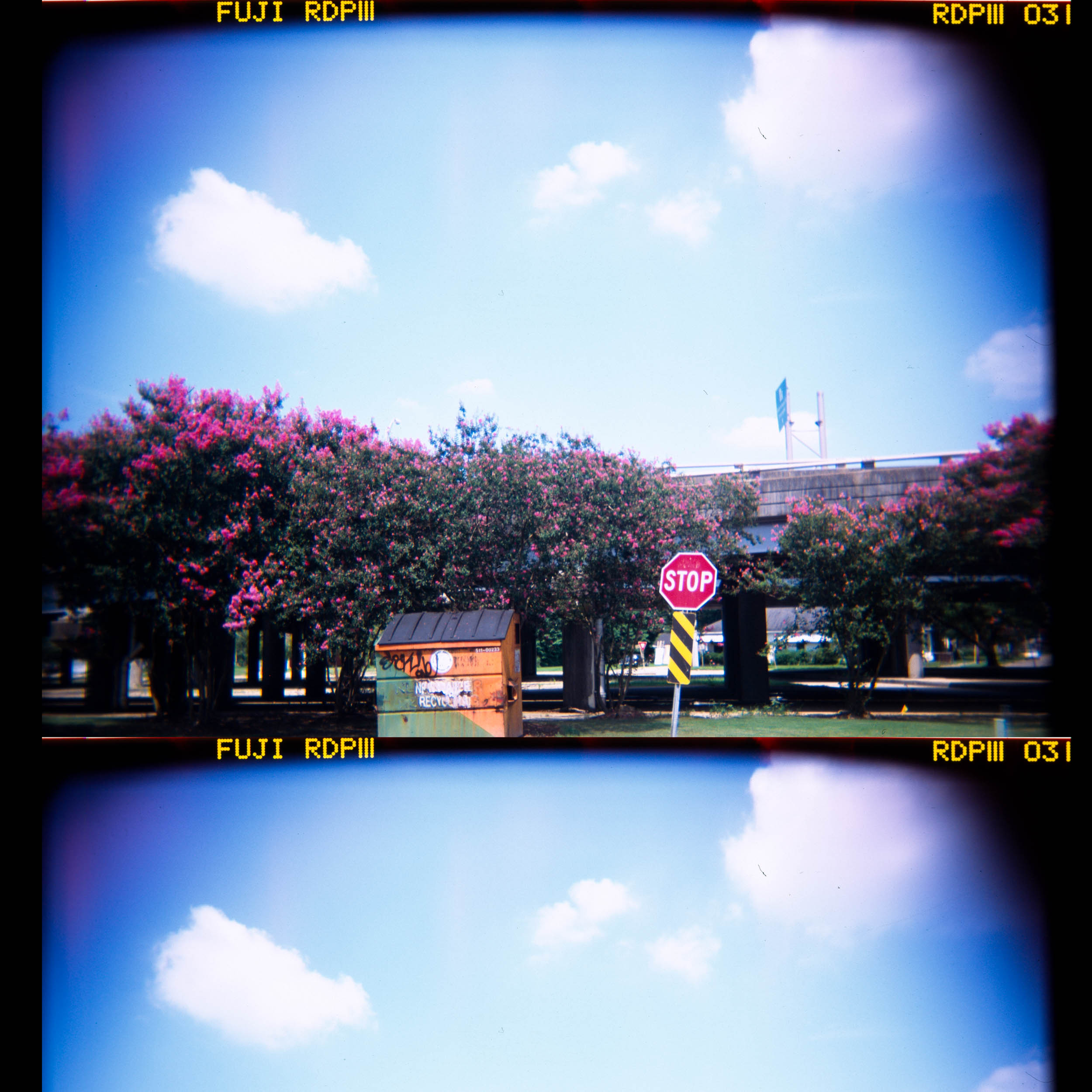 Weird Scan, St. Petersburg, FL Holga