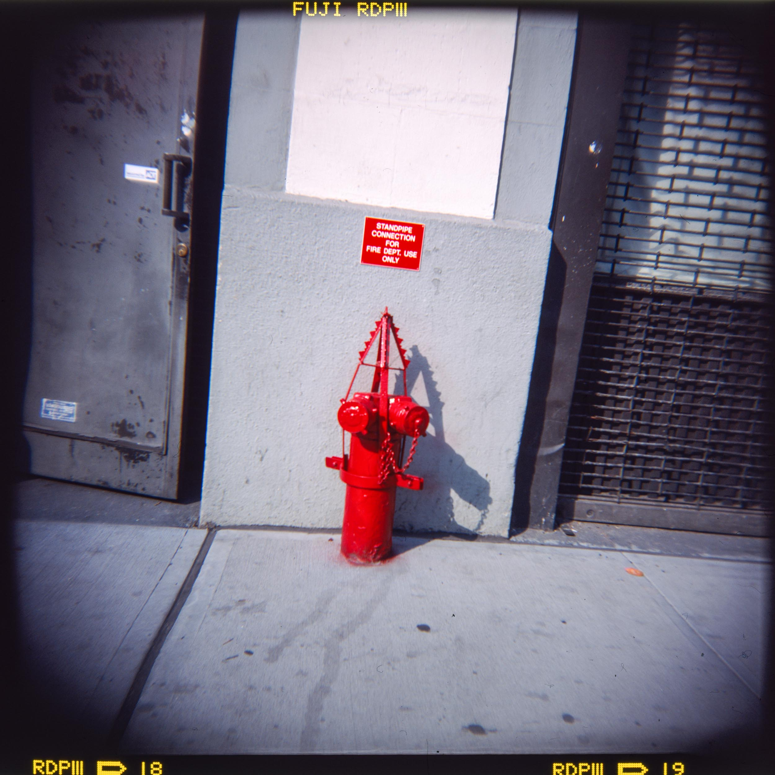 Fire Hydrant, NYC Holga