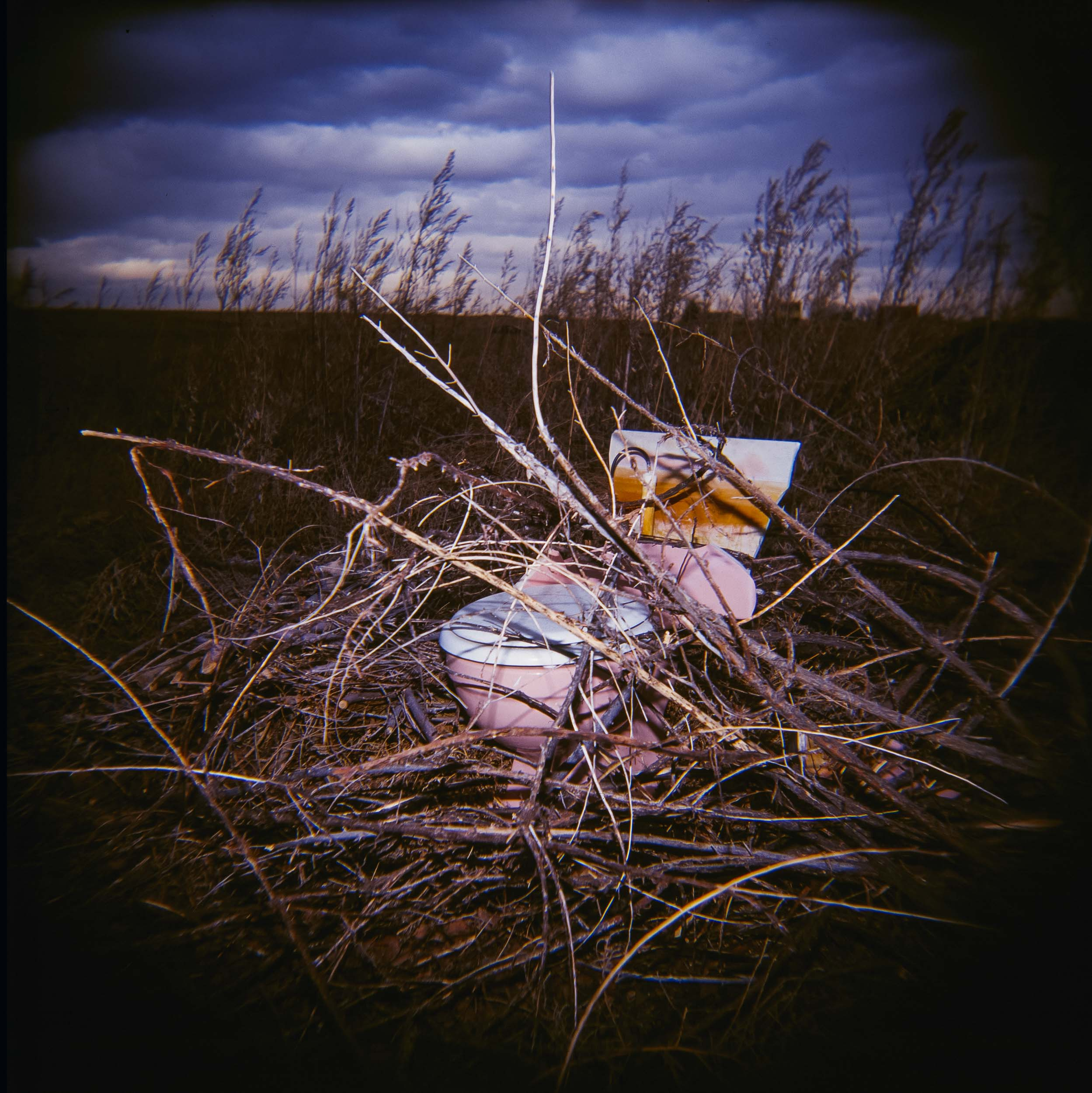 Pink Toilet, Colorado Holga