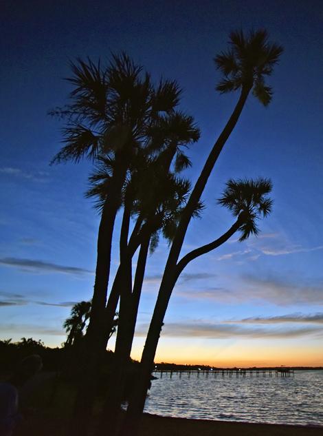 Sunrise photographed Liles and Bayshore