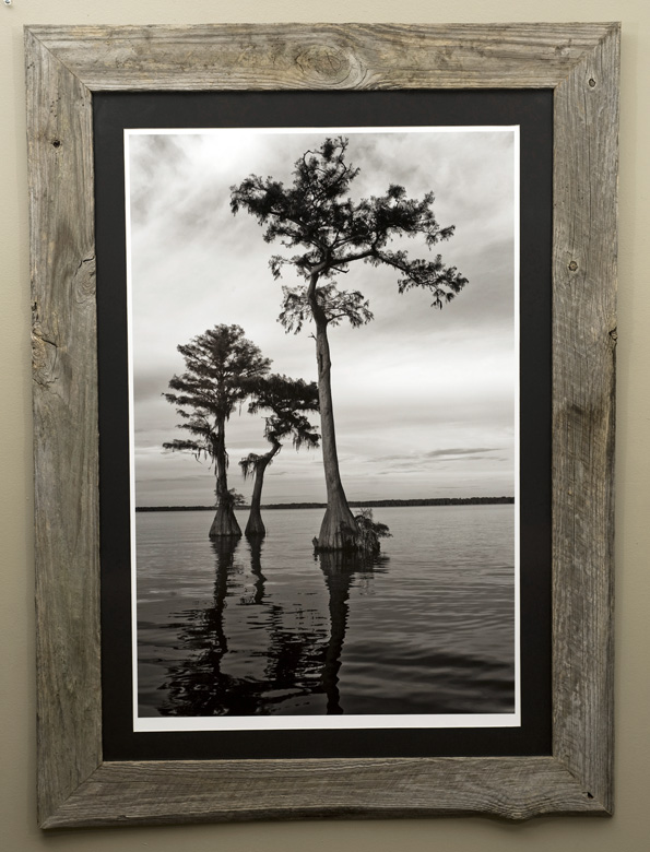 Double matted luster print framed with reclaimed siding from the Prine House, in Terra Ceia, FL, circa 1912.