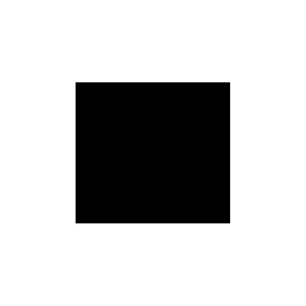 logo-boston-globe.png