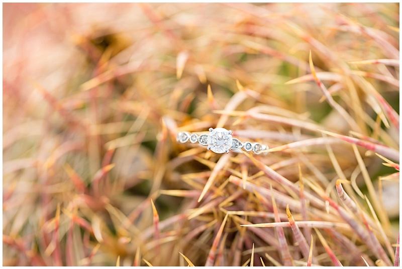 019Phoenix Arizona wedding photographer .jpg