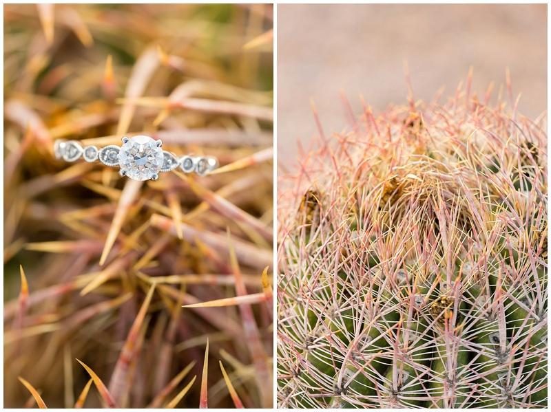 018Phoenix Arizona wedding photographer .jpg