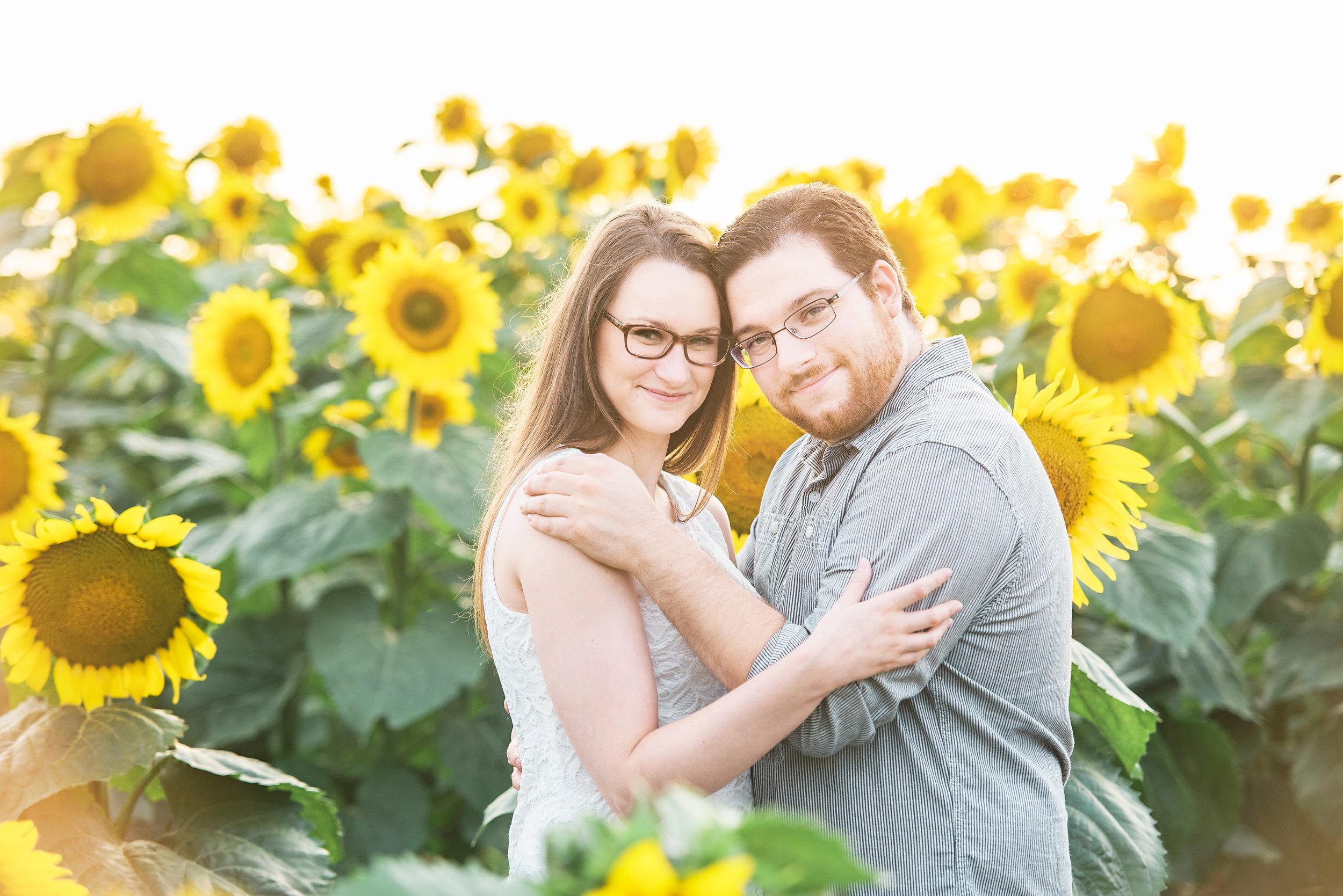 Sunflower Engagement Griswold CT Summer.jpg