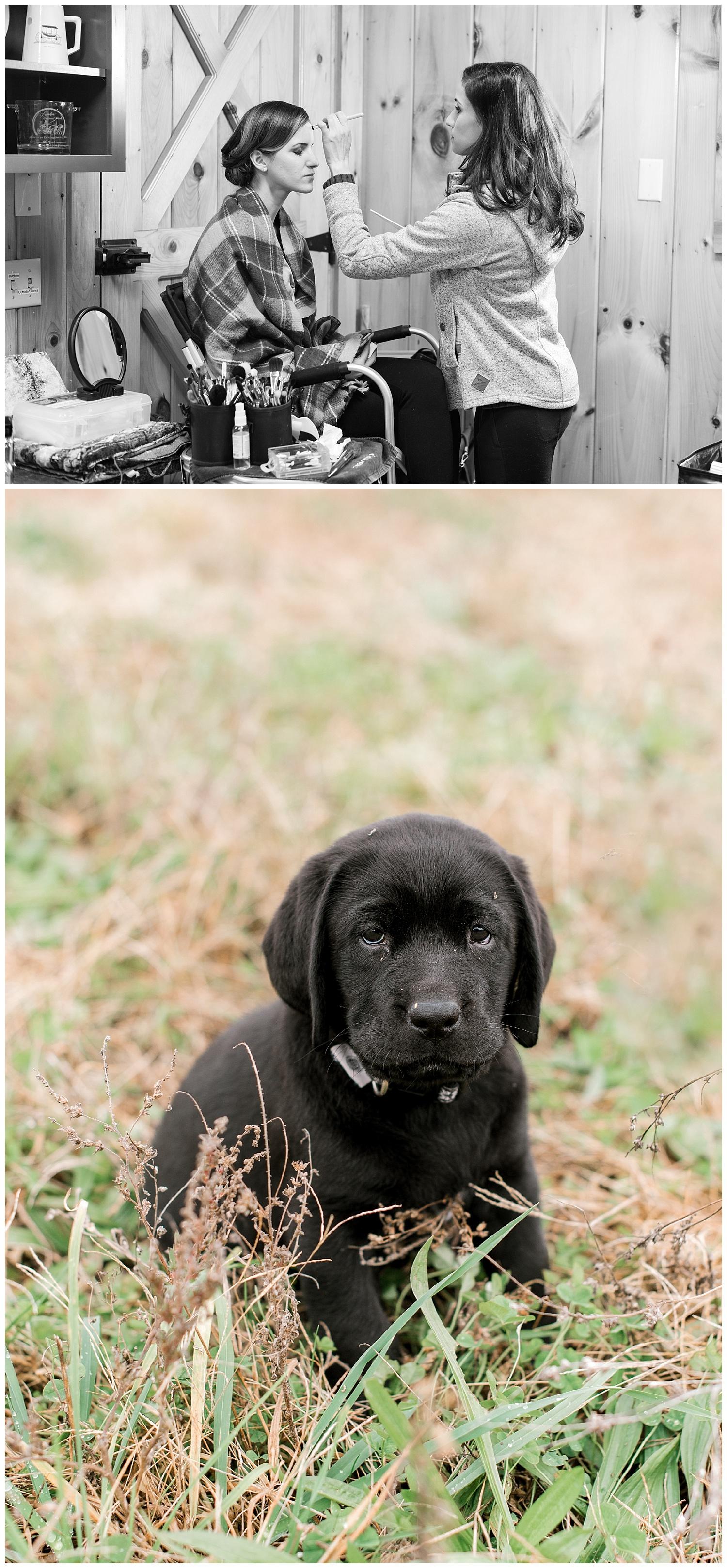 pompositticut-farm-fall-wedding-photography-hudson-massachusetts-photo-2.jpg