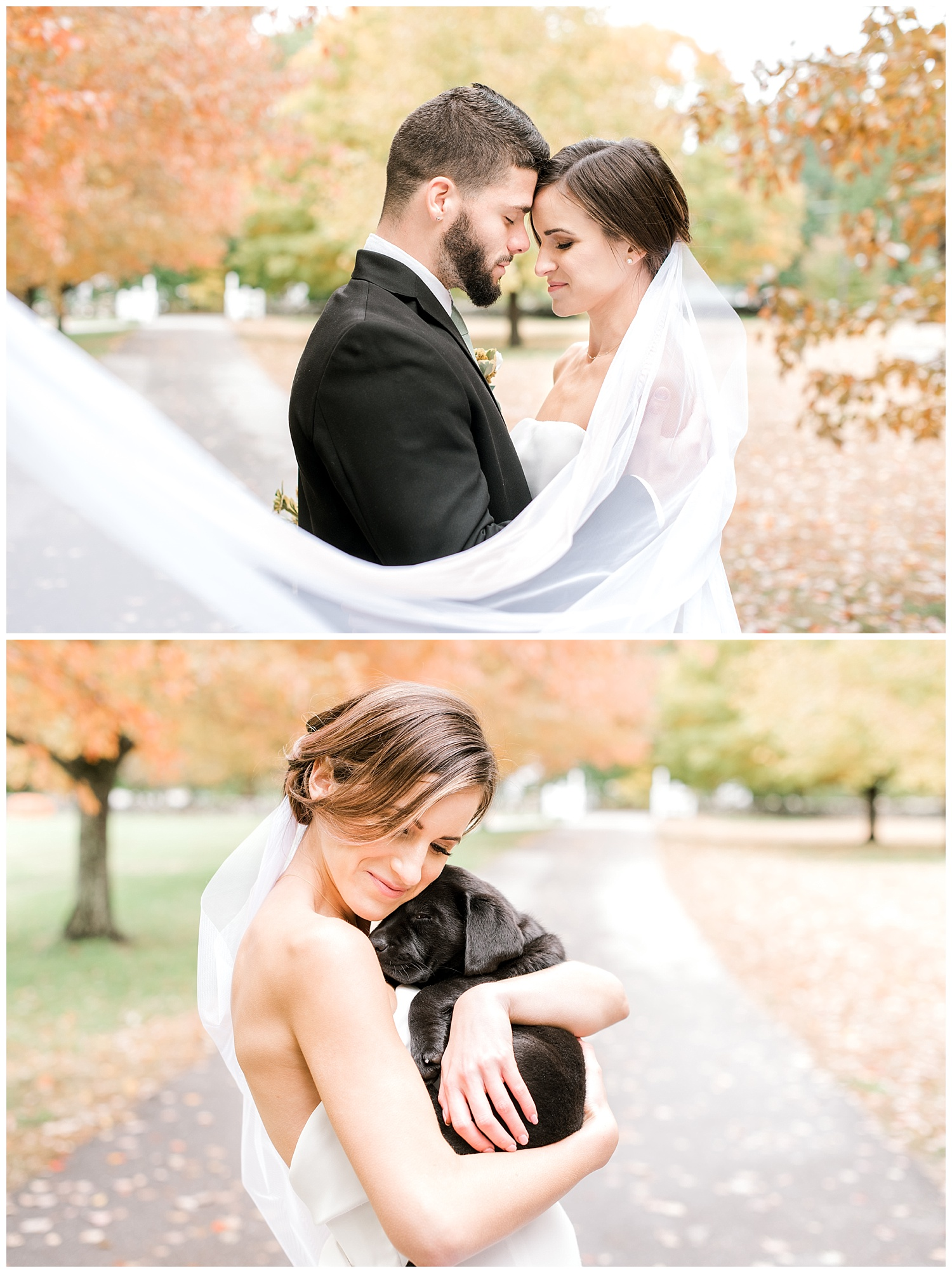 pompositticut-farm-fall-wedding-photography-hudson-massachusetts-photo-17.jpg