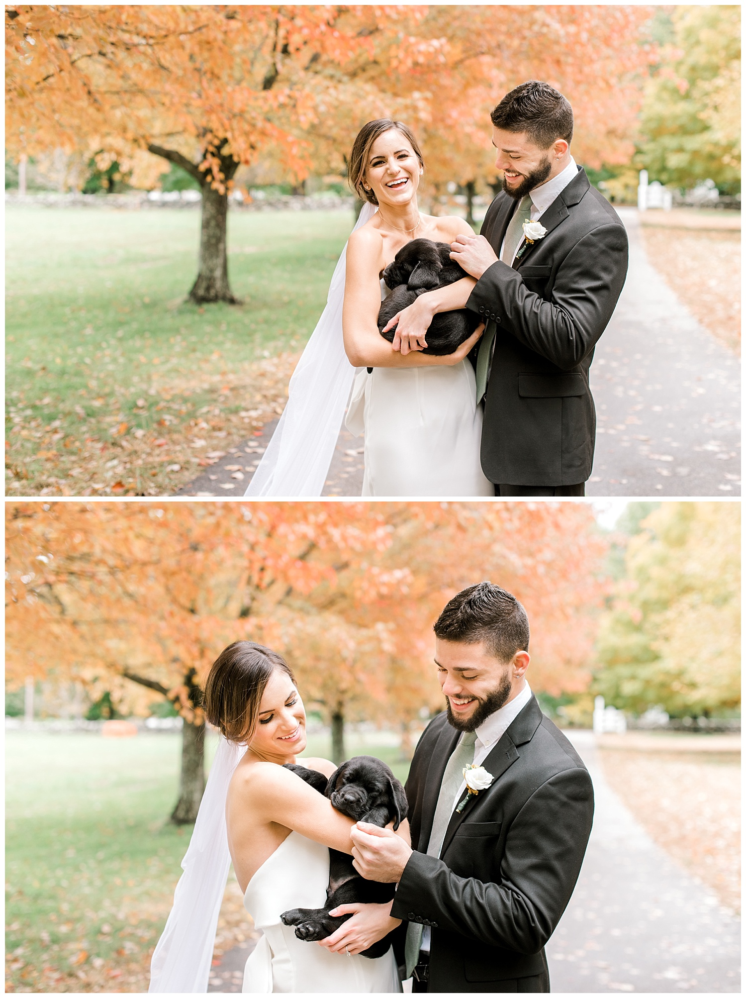 pompositticut-farm-fall-wedding-photography-hudson-massachusetts-photo-18.jpg