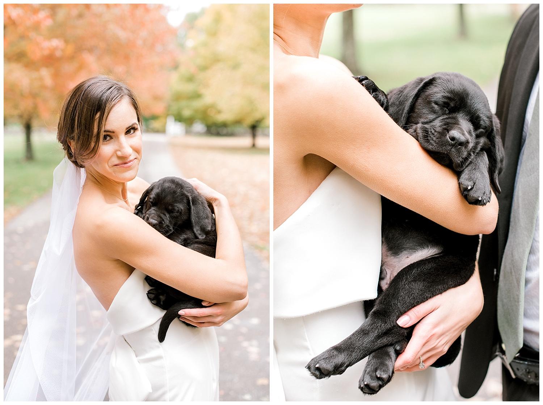 pompositticut-farm-fall-wedding-photography-hudson-massachusetts-photo-19.jpg