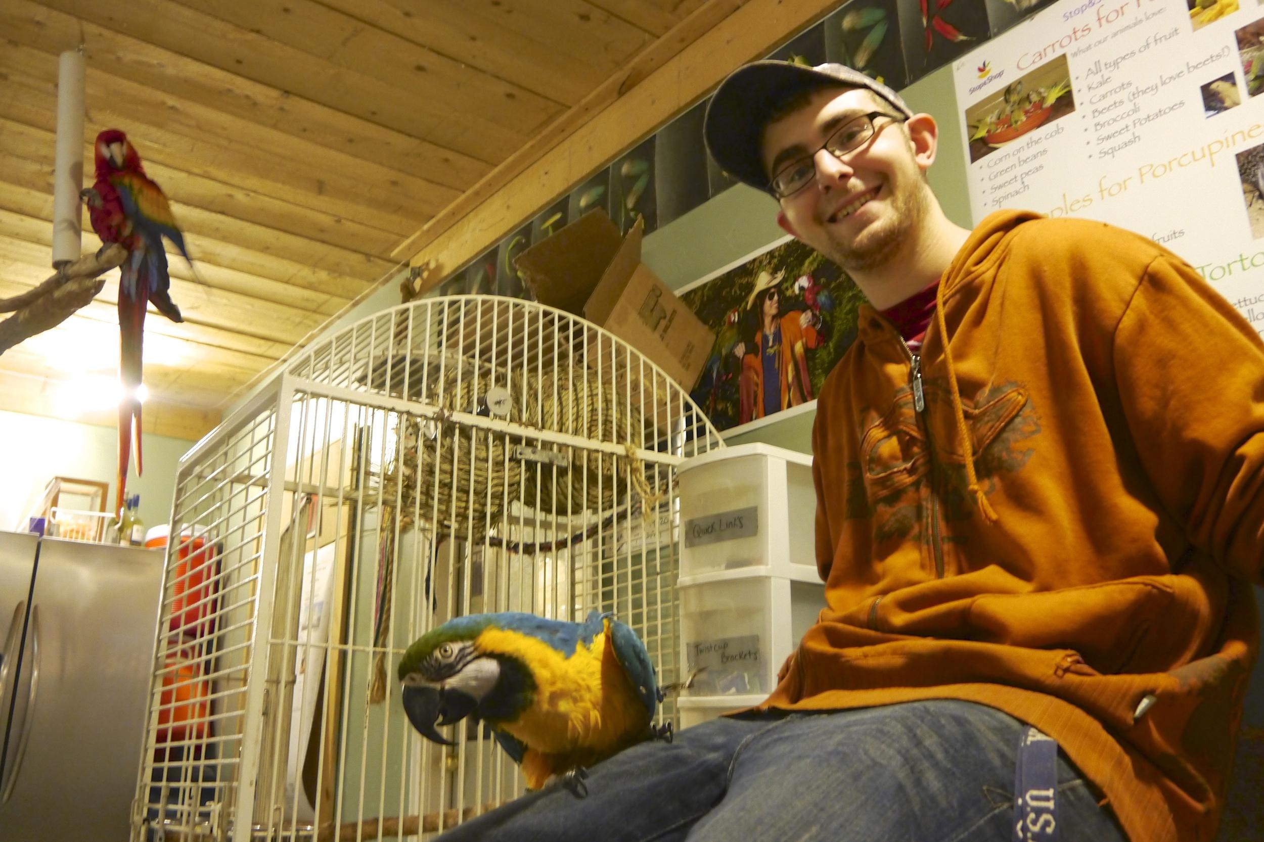Foster Parrots - Kevin with Lightning.jpg