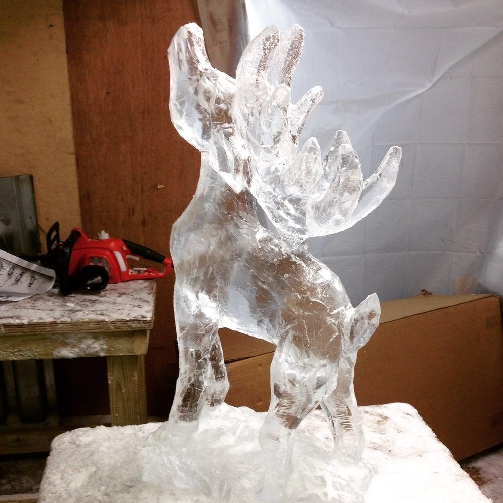 stag ice.jpeg
