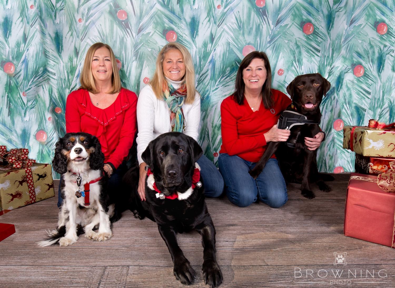 Christmas dogs-2
