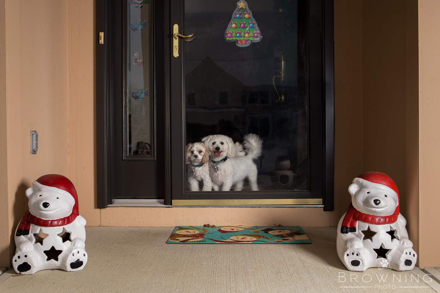 christmas-dogs-at-home-4