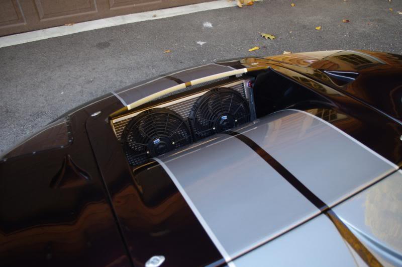 GT40 MKI Allan 17.JPG