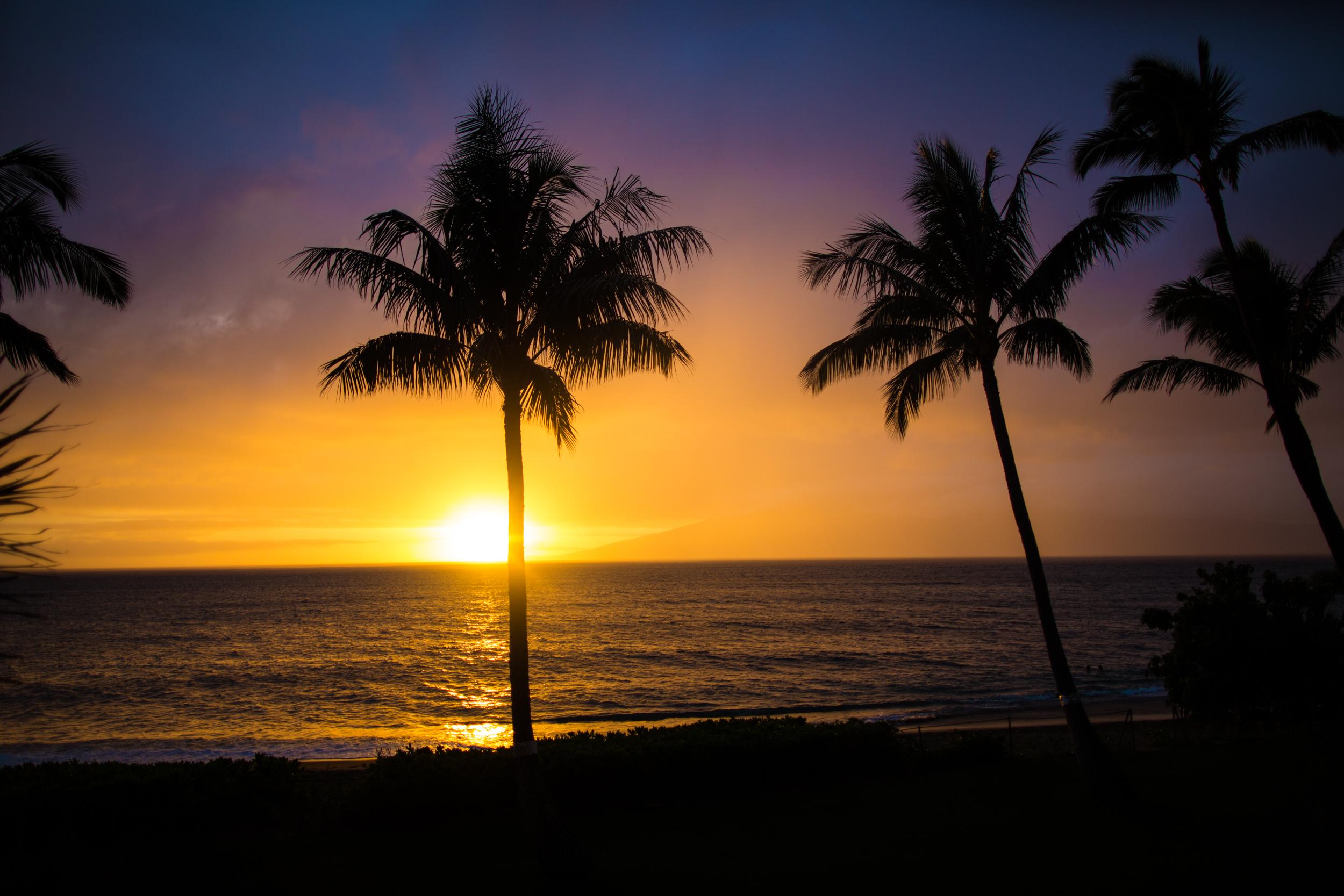 Hawaii_Destination_Video.jpg