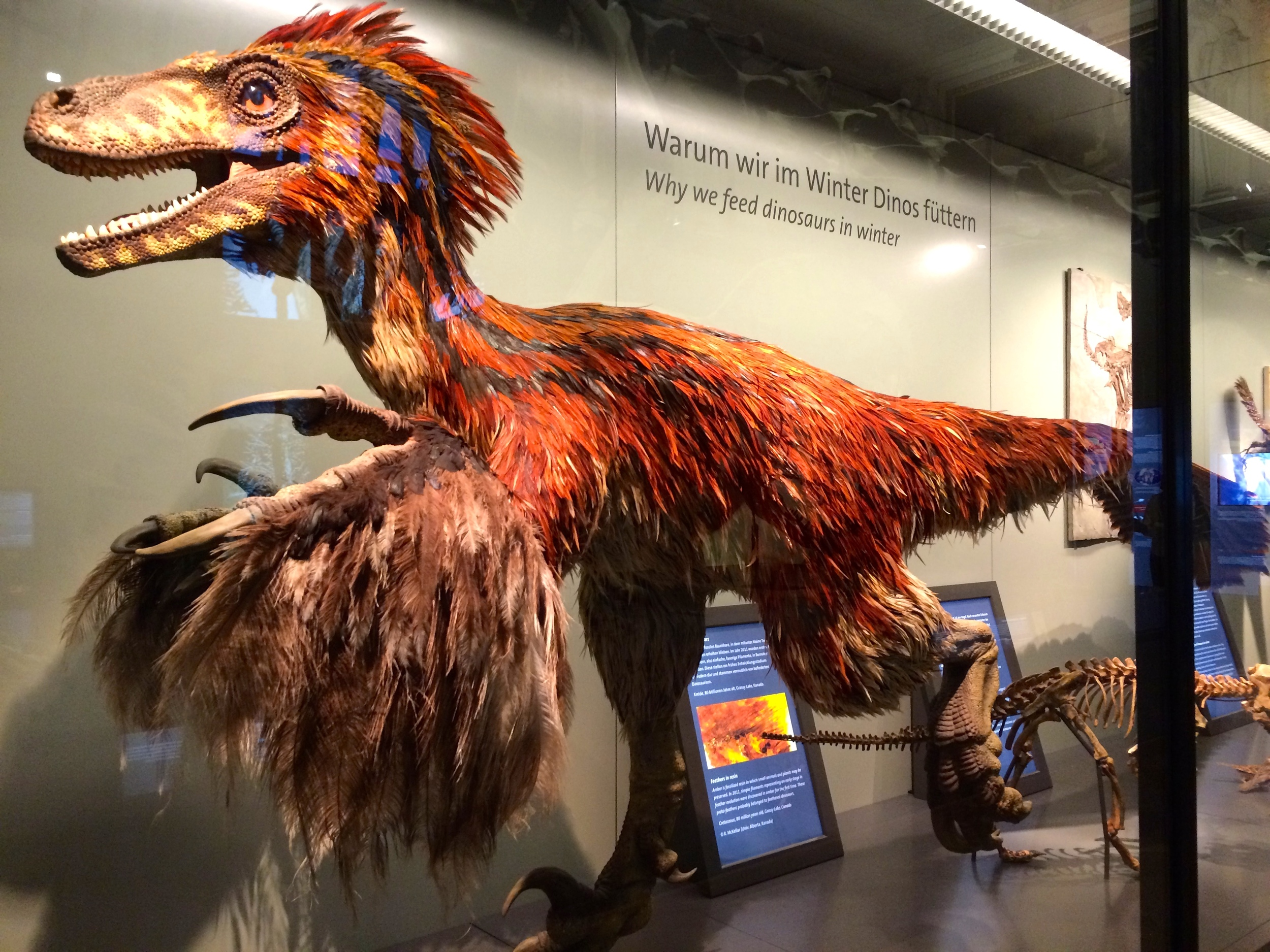 """I still can't get over the whole """"Dinosaurs had feathers"""" thing."""
