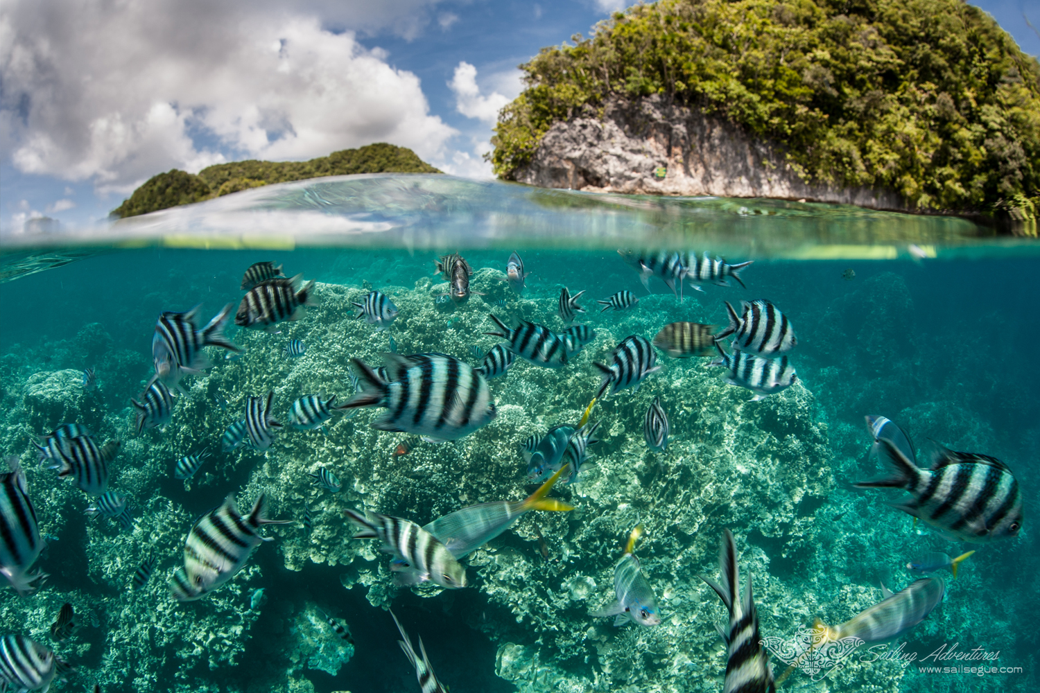 Palau, stunning above and below the water