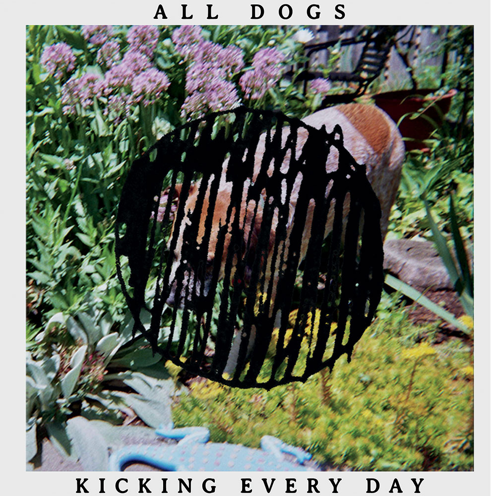 """14. ALL DOGS 
