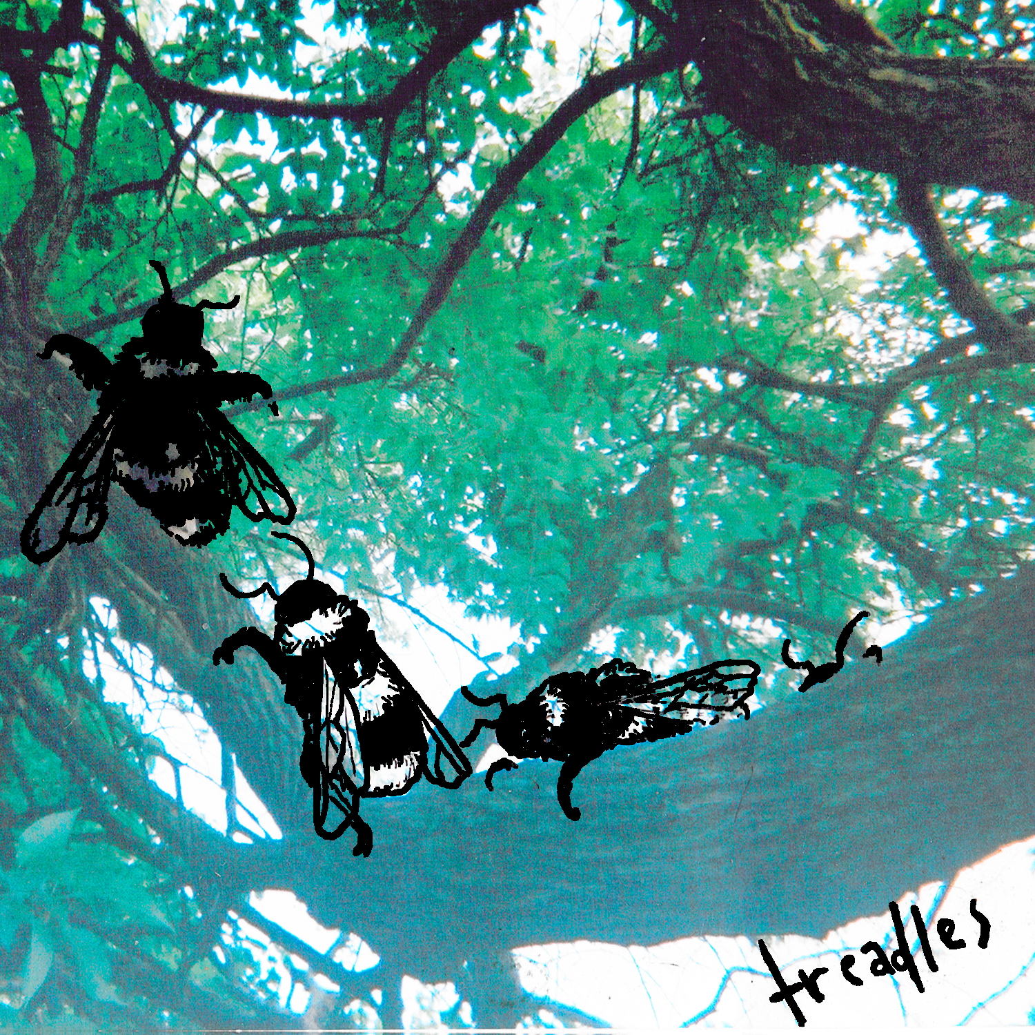 treadles cover.png