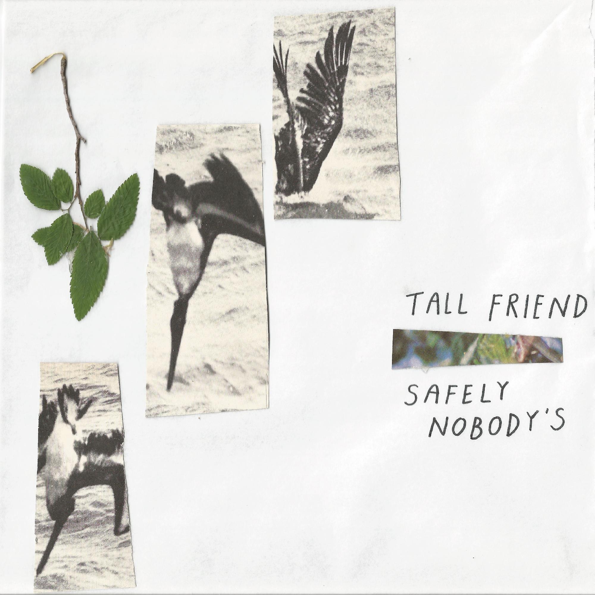 Tall Friend cover.jpg