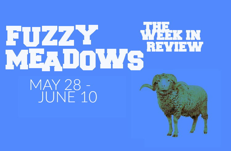 fuzzy meadows blue.png