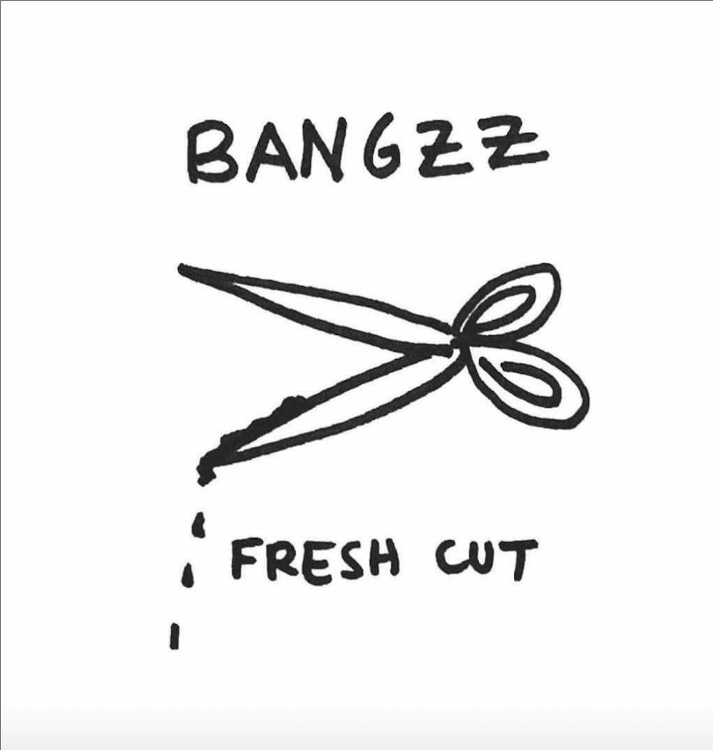 Bangzz_FreshCut.png