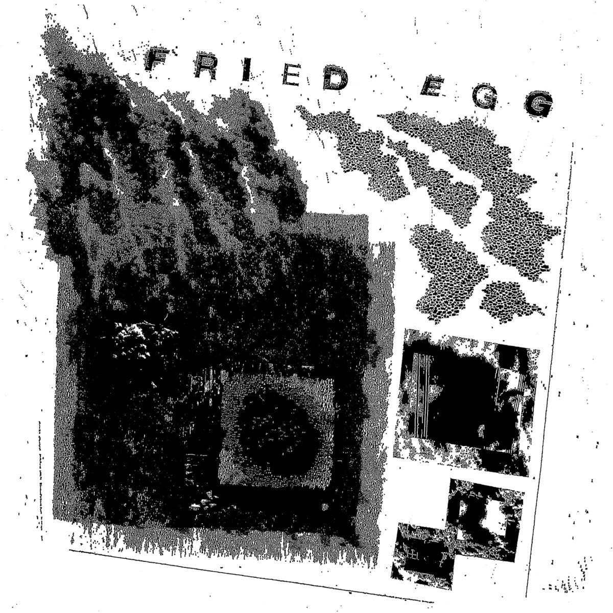 fried egg cover.jpg