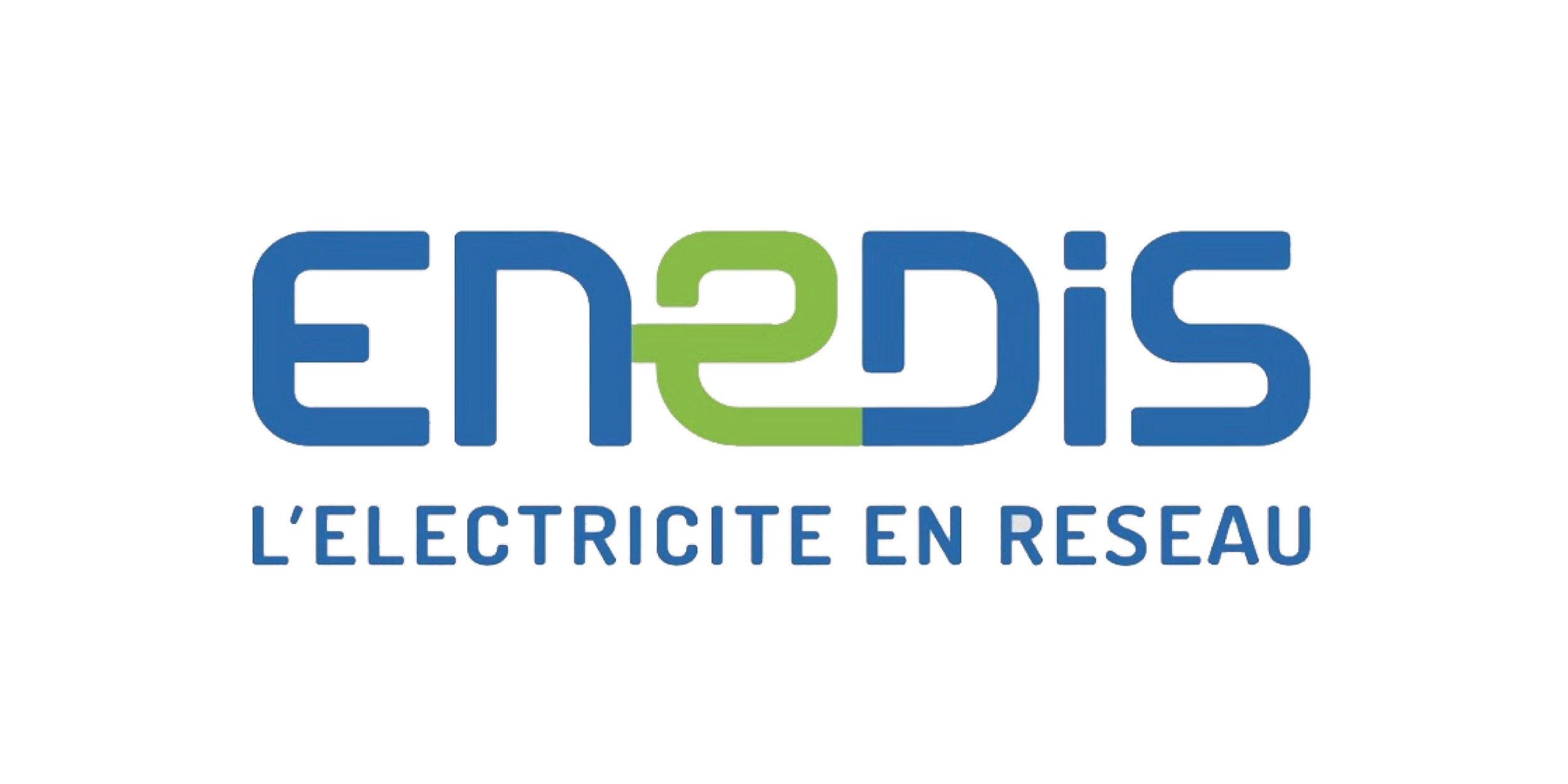 Logo-Enedis4.jpg
