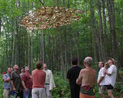 """Visitors viewing part of """"TreeSon"""""""