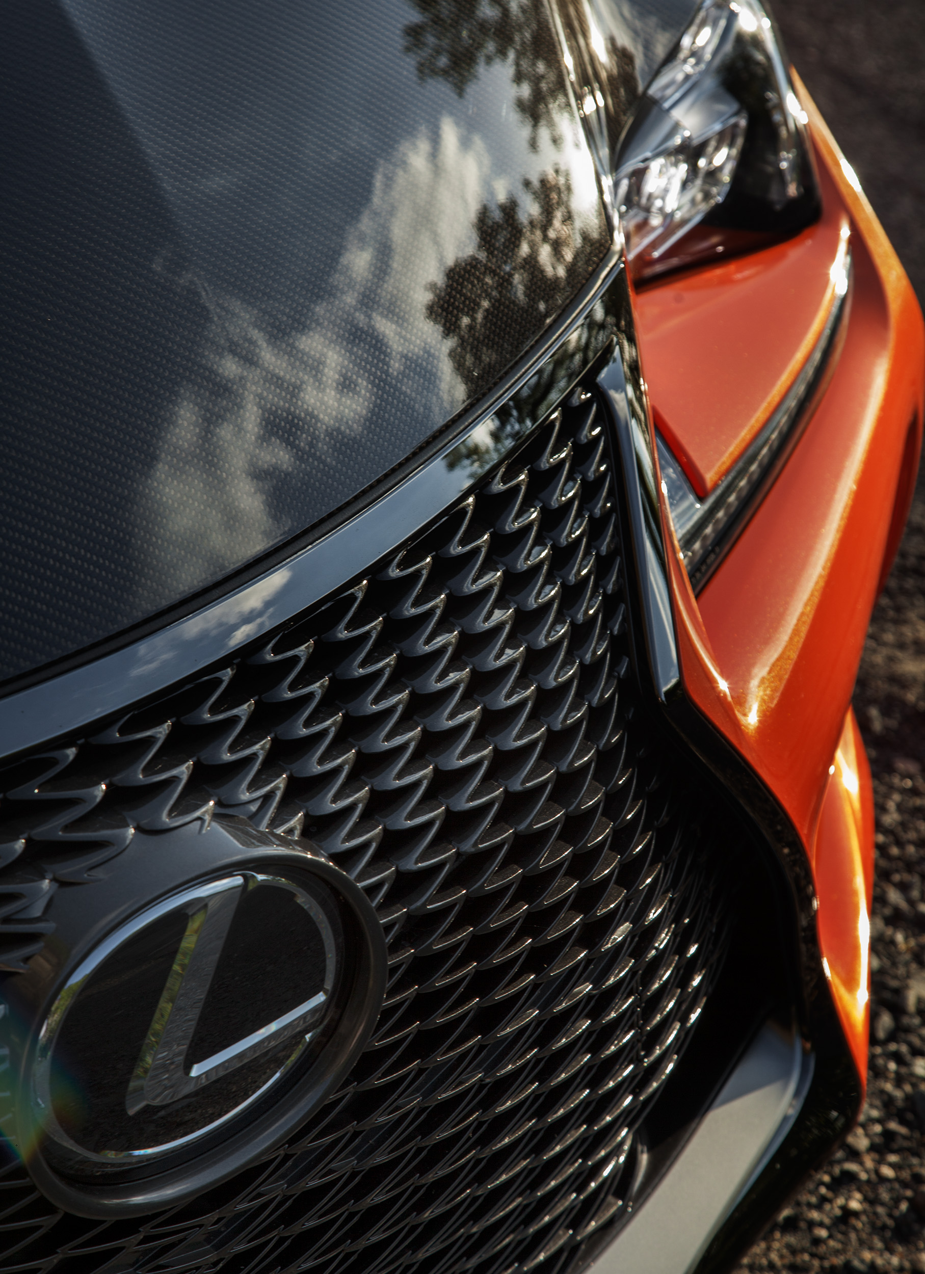 09_Lexus_Landscape_098.jpg
