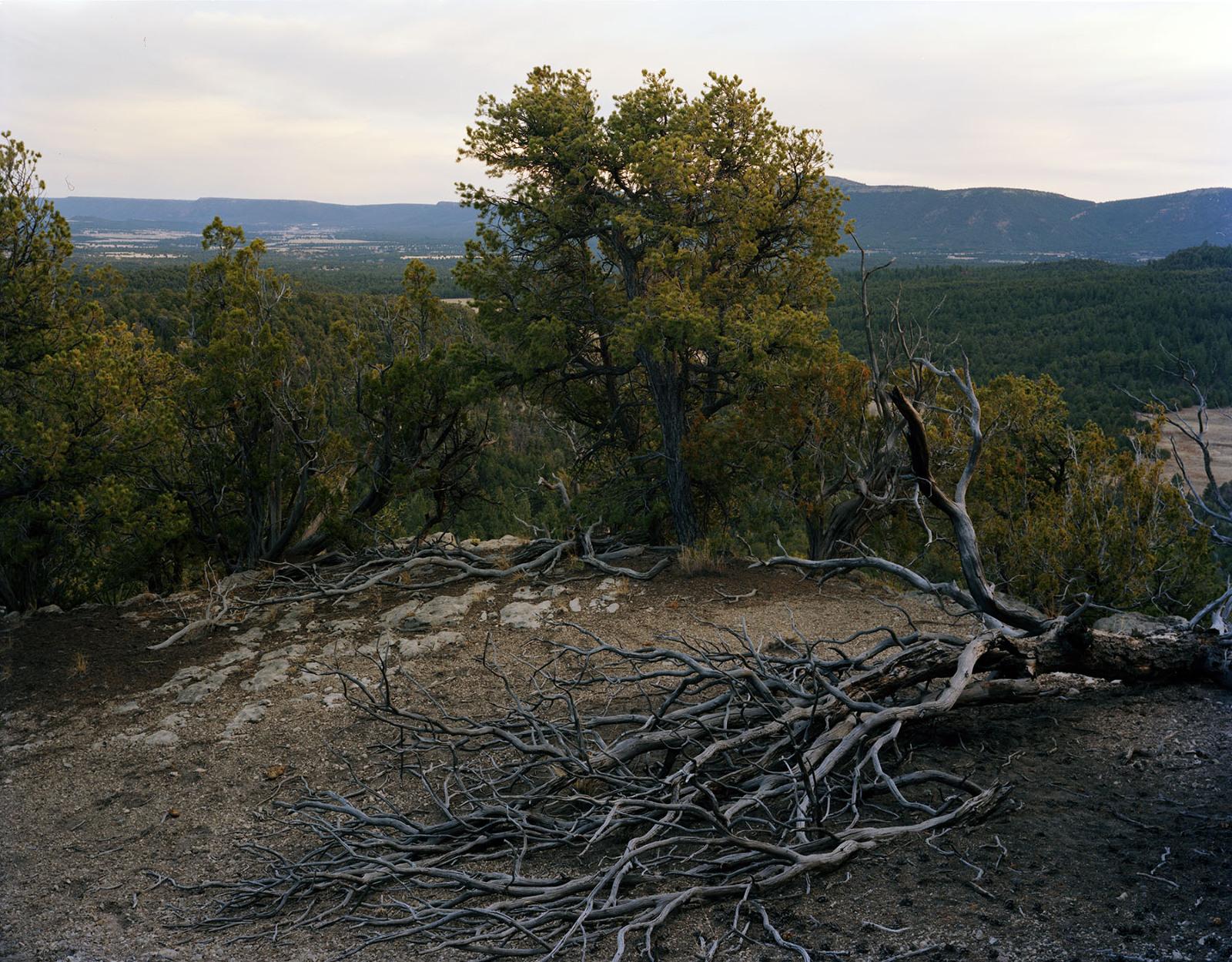 Toward Pecos, New Mexico