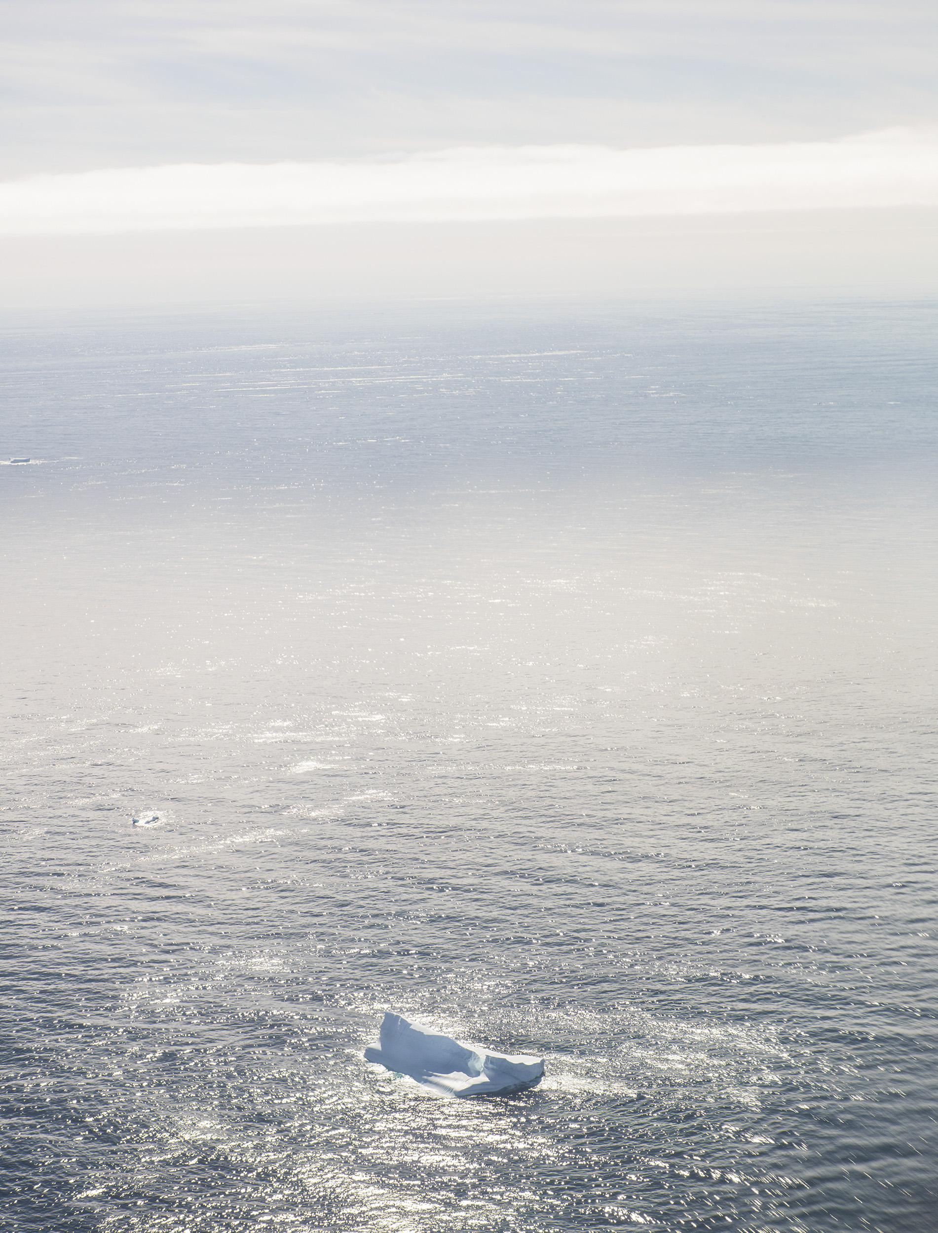 The International Ice Patrol - Monocle