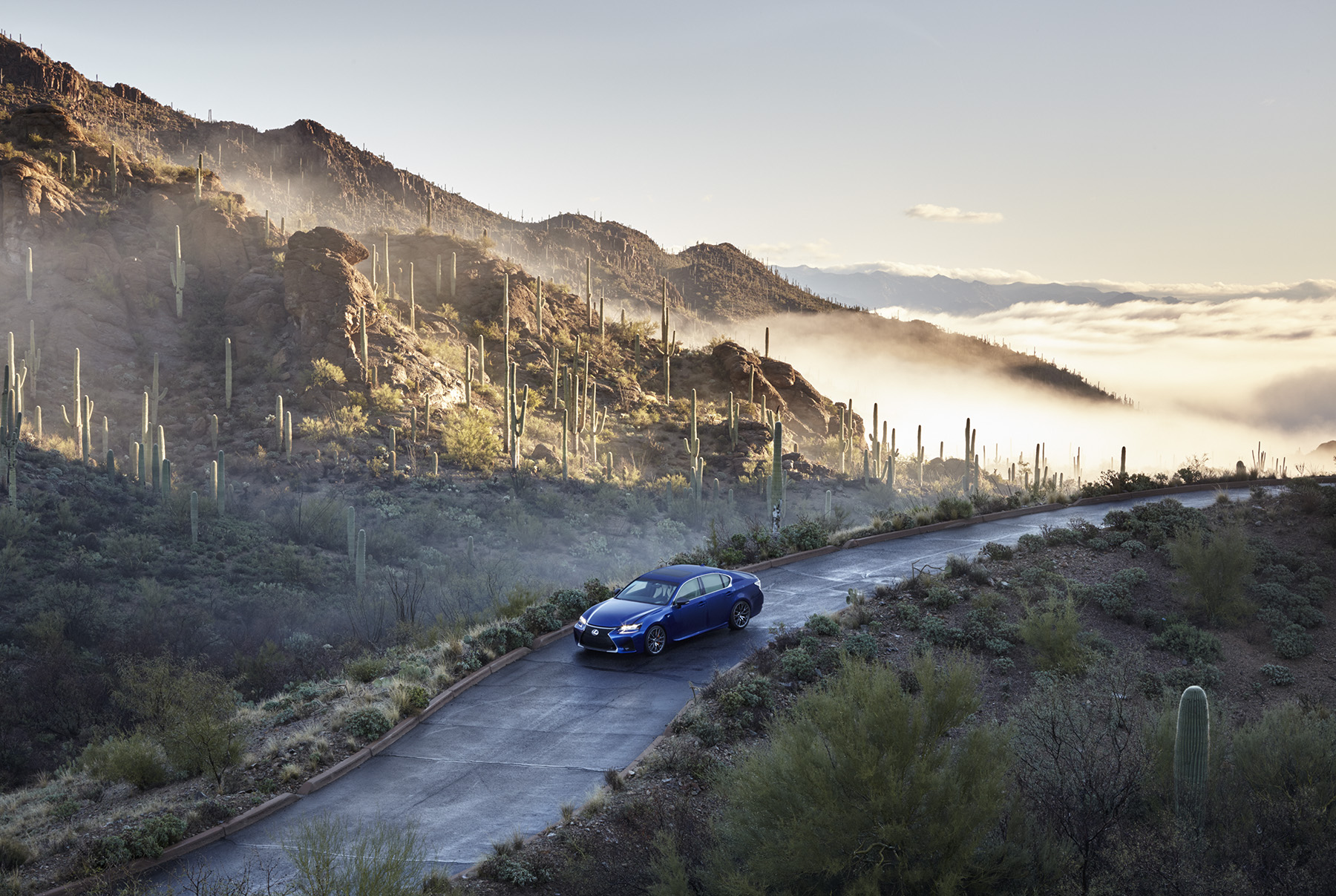 Out of the Mist: Lexus GS - Winkreative London