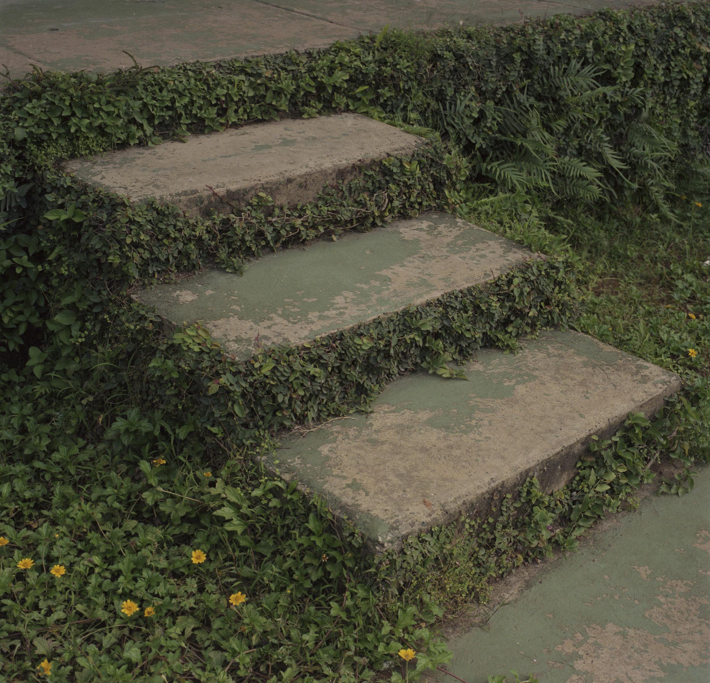 steps001.jpg