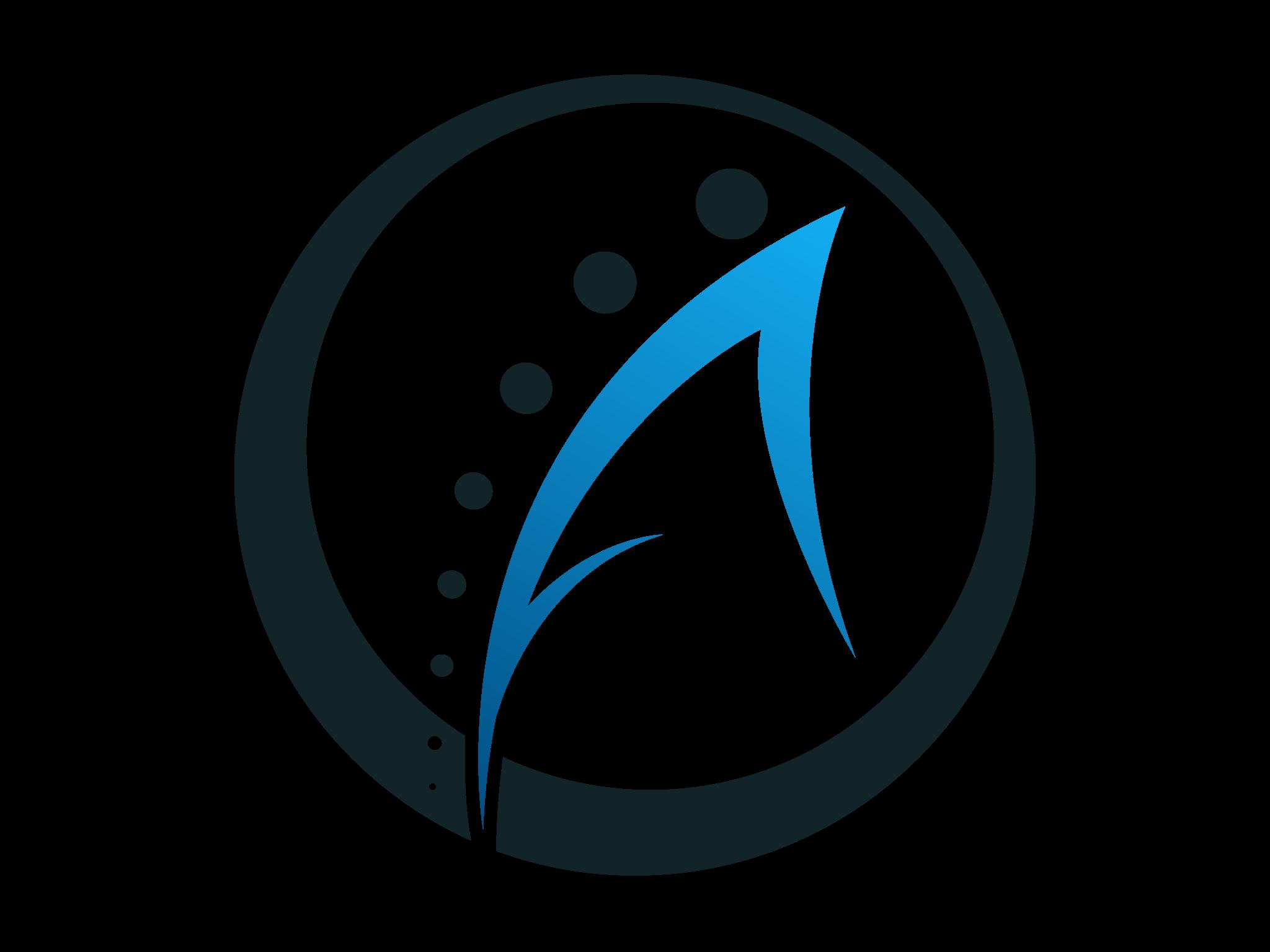 alpine-security-logo.jpg