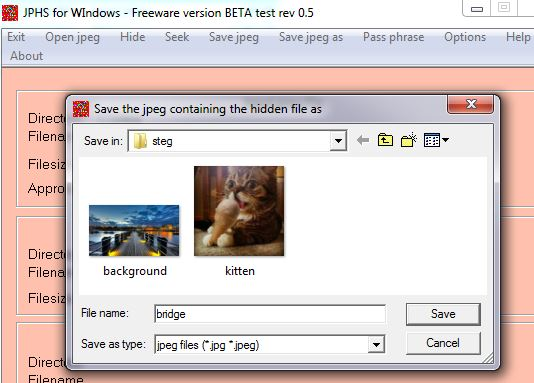 Saving the Steg'd file in JPHS for Windows