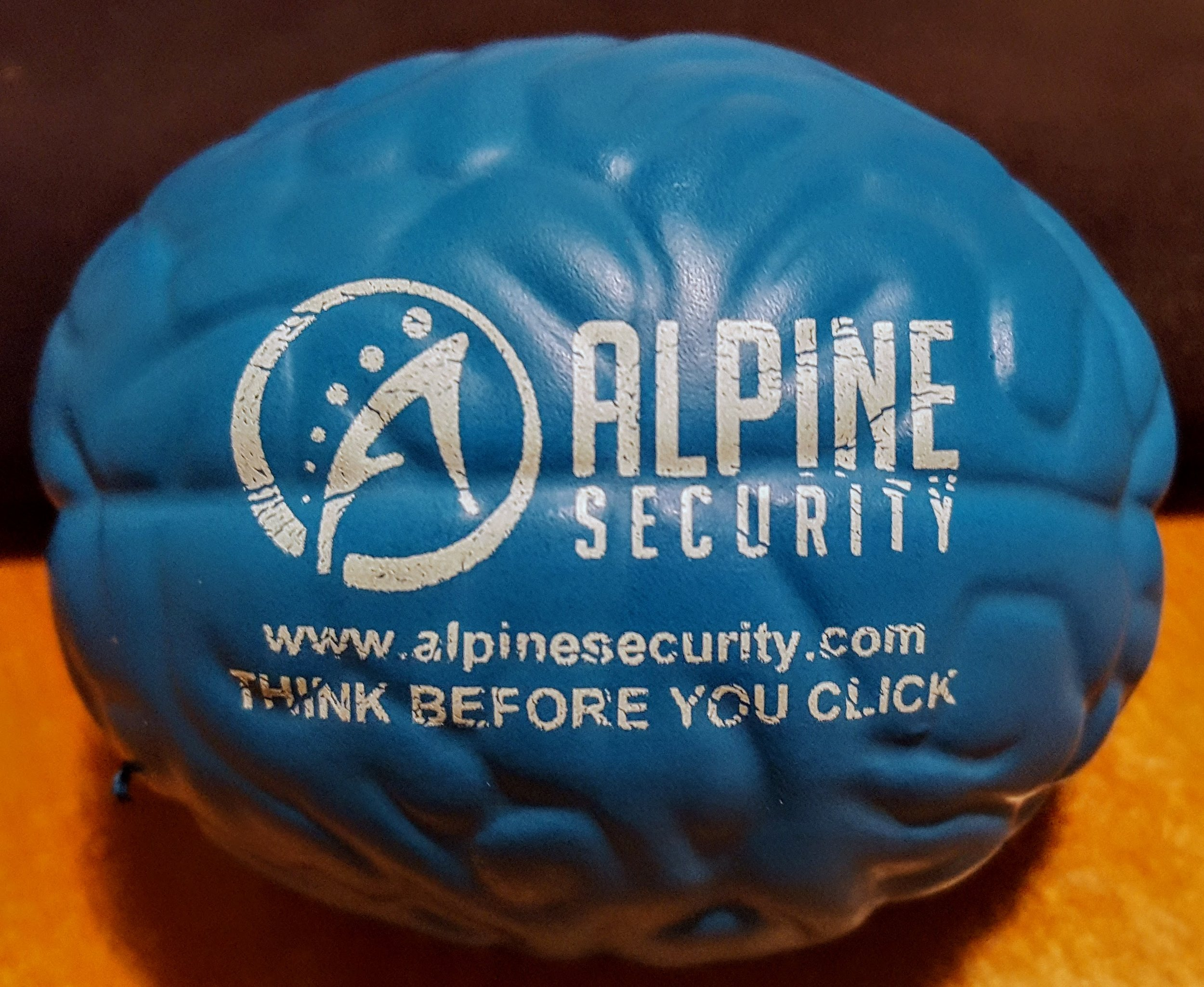Alpine Security Squeezy Brain - Think Before you Click!
