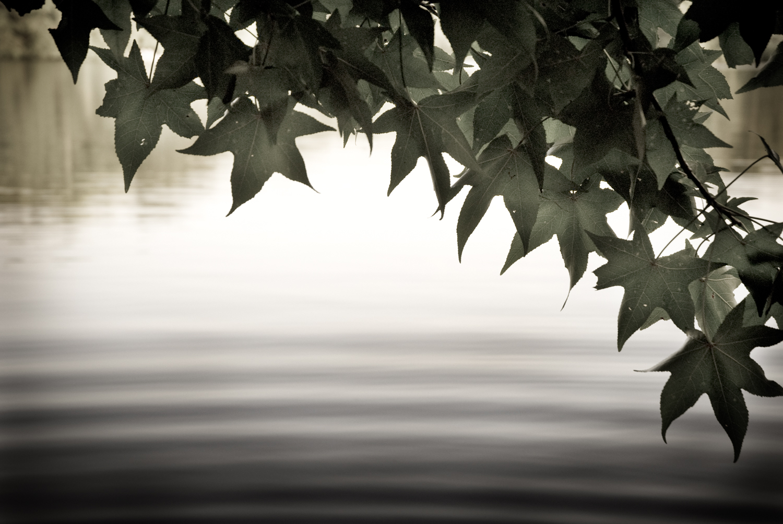 062_savidge_photography_travel.jpg