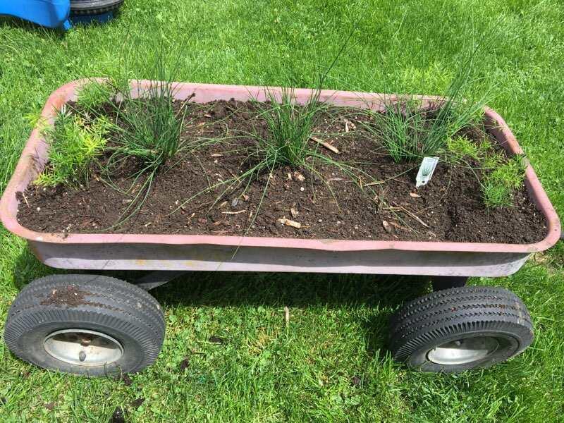 image2 (88).jpegDIY Wagon Flower Planter - Upcycling A Rusty Wagon